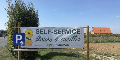 «Cueillette Fleurie», le champ de fleurs en self-service !